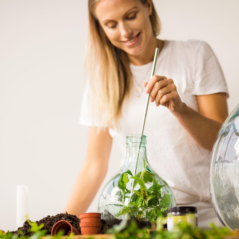 DIY Pflanzenterrarium Terrariumflasche 5 Liter, Starterset